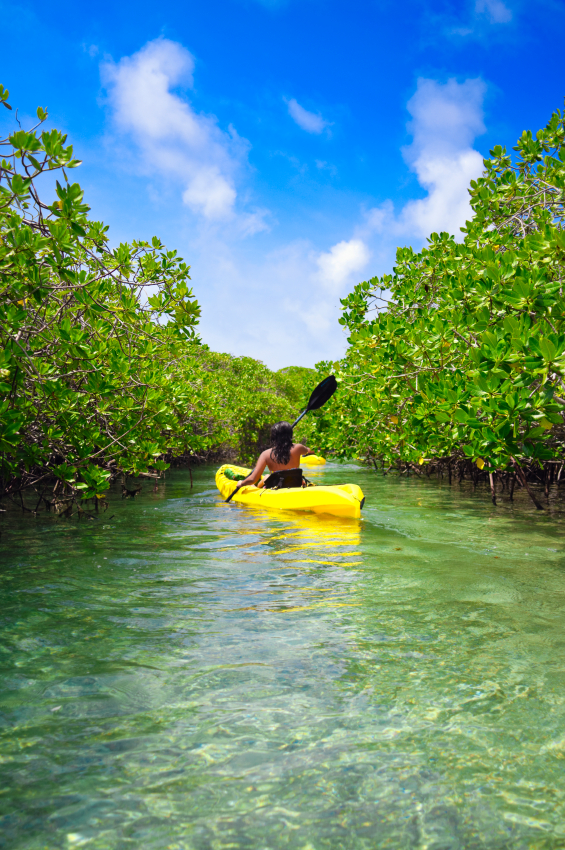 Adventure watersport charters dry tortugas marquesas for Florida 3 day fishing license
