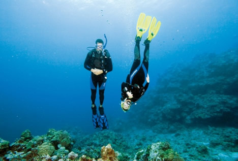 Specialty Dive Certifications